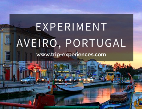 Experiment Aveiro: Group Activities